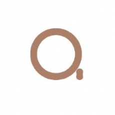 3b) O-ring uszczelniający podwójny #10 Citroen/Peugeot