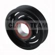 CT06DN113 - Sprzęgło kompletne do sprężarki DENSO / AUDI 110mm/6PK